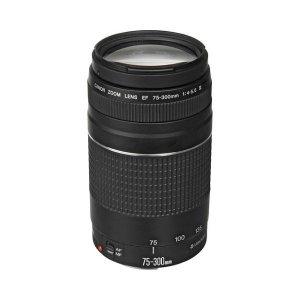 Canon EF 75-300mm F/4-5.6 III Lens photo